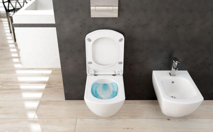 Nowoczesna toaleta bezrantowa – zalety i wady